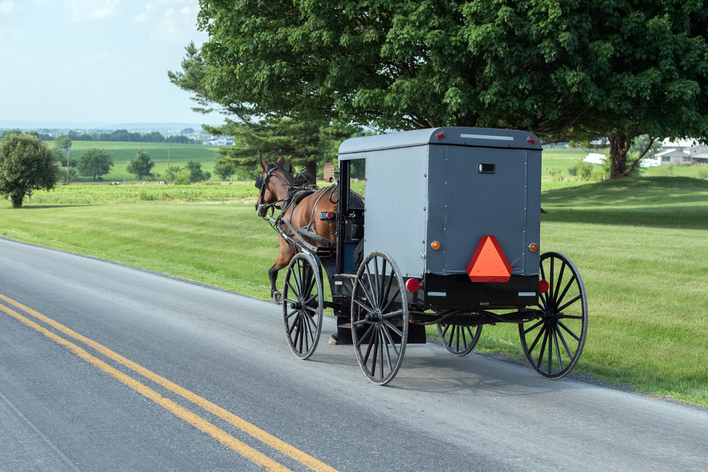 a horse walking a buggy down the street